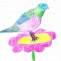 Pink and Green Bird on Flower - Abby Whitt