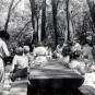 Family Picnic - circa 1960