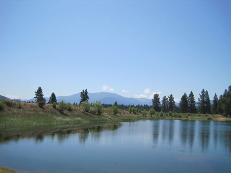 Upper Pond in Summer