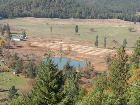 Aerial View of Nursery Site - 2010