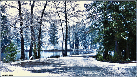 Lower Pond Snow